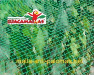 Con la malla anti-palomas sus cultivos crecerán a salvo de las aves que puedan comer o dañar a sus